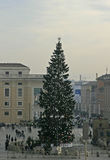 Visitors and Christmas Tree in Vatican Square Royalty Free Stock Photography