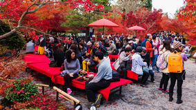 Visitors at Eikando garden, Kyoto. KYOTO, JAPAN - NOVEMBER 22, 2016: Unidentified crowd visitors visit Eikando garden to enjoy autumn foliage in peak fall color Royalty Free Stock Photos