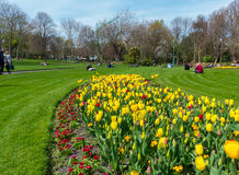 Visitors enjoy the beauty of Phoenix Park, in Dublin City, with its spring flowers and tulip beds. Visitors enjoy the early spring sunshine and beauty of the Stock Photography