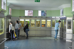 Visitors at the exhibition of insects Stock Photo