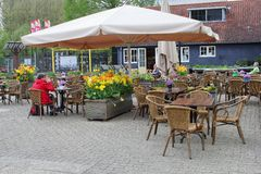 Visitors and flowers at a terrace in the Botanical Gardens, Utrecht, Netherlands Royalty Free Stock Photography