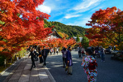 Visitors and foreign tourists enjoy the vibrant colors of fall at Eikan-do Zenrin-ji Temple in Kyoto, Japan Stock Photo
