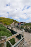 Visitors going to visit African penguins colony. Royalty Free Stock Images
