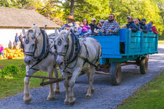Free Visitors In Old Farm Wagon Royalty Free Stock Photos - 79516008