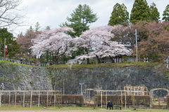 Visitors in Iwate park (Morioka castle site park). Royalty Free Stock Images