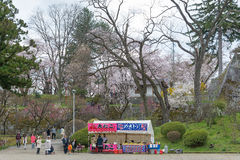 Visitors in Iwate park (Morioka castle site park). Royalty Free Stock Image