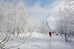 The visitors Jilin rime Royalty Free Stock Image