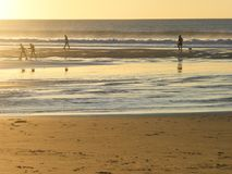 Visitors at Land`s End, Oregon Coast, at sunset Royalty Free Stock Photo