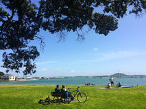 Visitors in Okahu Bay in Auckland New Zealand Royalty Free Stock Image