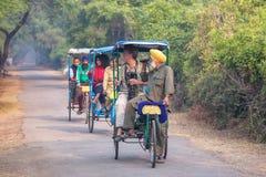 Visitors riding cycle rickshaw in Keoladeo Ghana National Park i Royalty Free Stock Photo