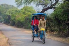 Visitors riding cycle rickshaw in Keoladeo Ghana National Park i Stock Image