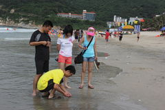 The visitors of the sea in SHENZHEN Stock Image
