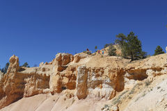 Visitors at the Sunrise Point at Bryce Canyon National Park in Utah Stock Image