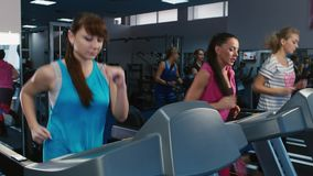 A group of attractive women training on a treadmill. Visitors to the sports club train on the treadmill stock video footage