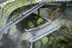 Visitors walk across the sky bridge in the rainforest atrium at the Gardens by the Bay in Singapore. Stock Photography