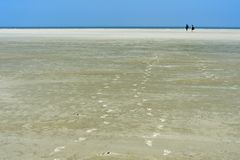 Free Visitors Walking Across The Mudflats Stock Photography - 140781922