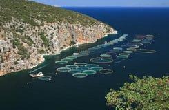 Viskwekerij, Griekenland Royalty-vrije Stock Foto's