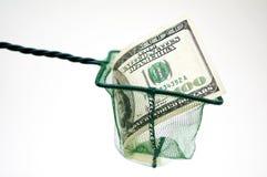 Visnet met geld conceptuele foto stock foto's