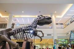 Visning och folk för dinosaurie som skelett- håller ögonen på på varuhuset royaltyfri fotografi