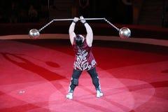 Visningtrick för stark man med vikter på arenan av cirkusen Royaltyfria Foton