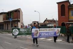 Visoni nazionali di liberazione della processione Immagini Stock Libere da Diritti