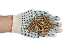 Visse des gants Photographie stock libre de droits