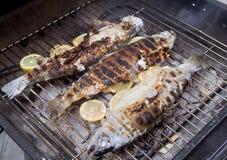 Vissen bij de grill Stock Afbeelding