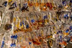 Vissen bij de Hong Kong Goldfish-markt - 2 stock foto