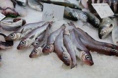 Vissen bij de markt Royalty-vrije Stock Afbeelding