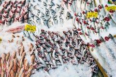 Vissen bij een markt in Istanboel Stock Afbeelding