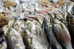 Vissen bij markt voor verkoop stock afbeeldingen