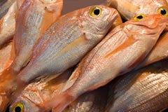 Vissen bij markt voor verkoop royalty-vrije stock afbeelding