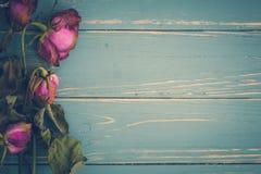 Vissen blommatappningbakgrund/vissnade blommatappning/vissnade blomman på tappningbakgrund Arkivbilder