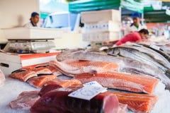 Vissen in box Stock Afbeelding