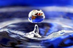 Vissen in daling Royalty-vrije Stock Afbeeldingen