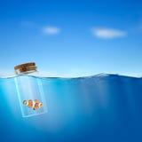 Vissen in de fles stock foto's