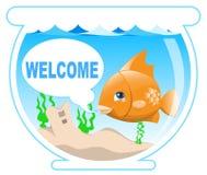 Vissen in de kom Royalty-vrije Stock Afbeelding