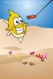 Vissen die aas achtervolgen Royalty-vrije Stock Foto's