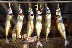 Vissen die door een staaf hangen. Stock Foto's
