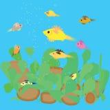 Vissen die in het aquarium voeden Stock Illustratie