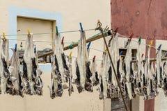Vissen die in openlucht drogen Stock Afbeelding