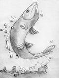 Vissen die uit water springen - potloodschets Stock Afbeelding