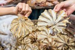 Vissen Droog Voedsel Stock Afbeelding