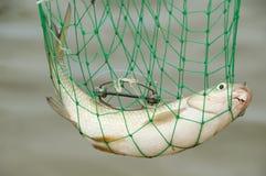 Vissen in een corf Stock Fotografie