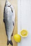 Vissen en Citroen stock afbeelding