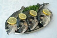 Vissen en citroenen Royalty-vrije Stock Foto's