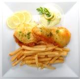 Vissen en Gebraden gerechten Royalty-vrije Stock Afbeeldingen