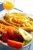 Vissen en Gebraden gerechten Royalty-vrije Stock Afbeelding