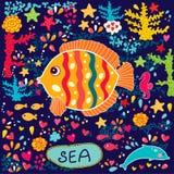 Vissen en het mariene leven Stock Foto's