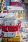 Vissen en ijs in plastic dienblad Stock Foto